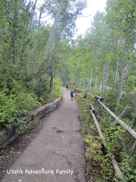 The trail is gorgeous and easy for everyone.