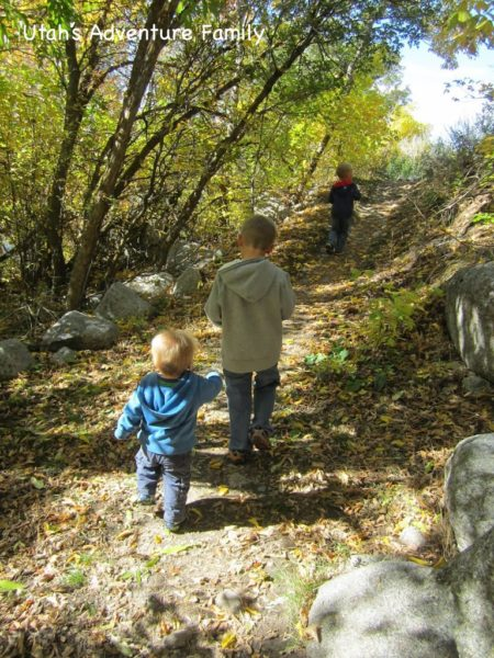 Our boys loved this hike.