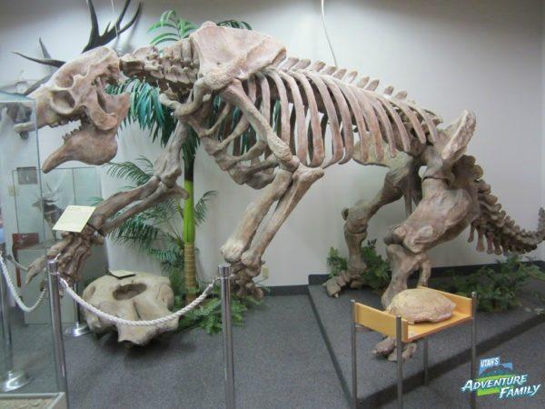 The giant sloth is impressive.