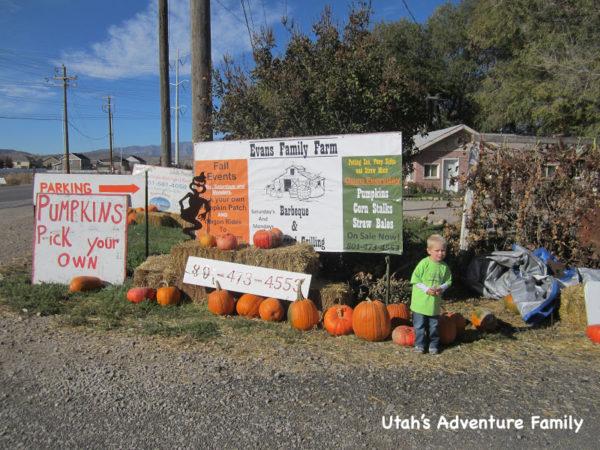 fall activities in Utah: evans-family-farm-7