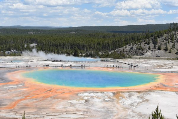 Grand Prismatic Spring Overlook in Yellowstone.