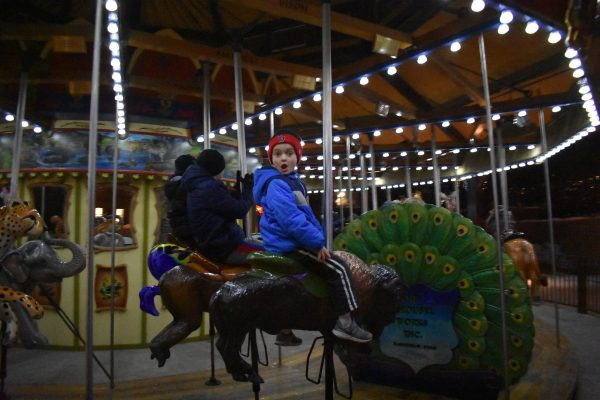 child riding the carousel at Hogle Zoo