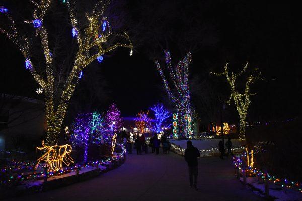 Zoo Lights at Hogle Zoo