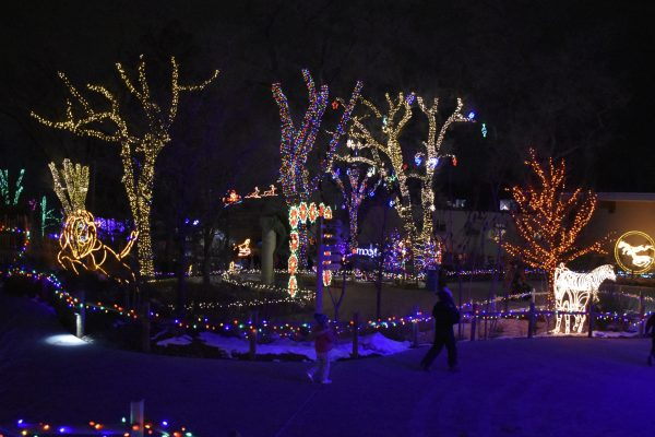 Hogle Zoo covered in Christmas Lights