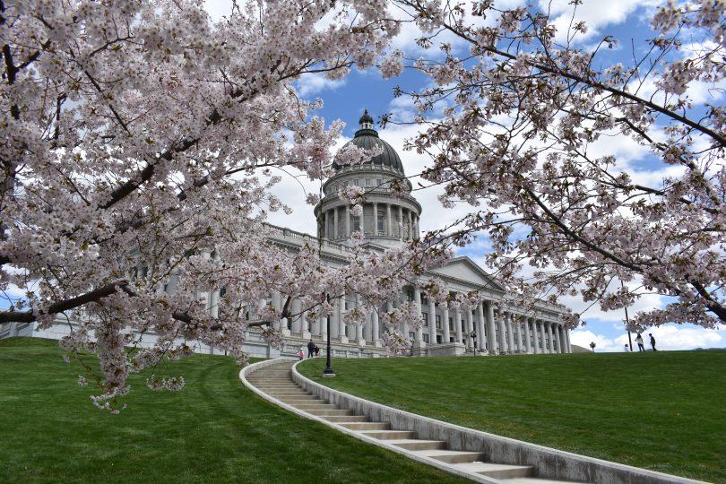 Utah Capitol Cherry Blossoms Utah S Adventure Family
