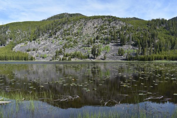 Things to do near Madison Yellowstone: Harlequin Lake