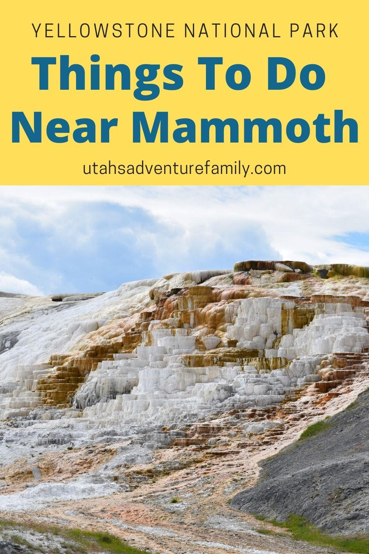 Things to do near Mammoth Yellowstone