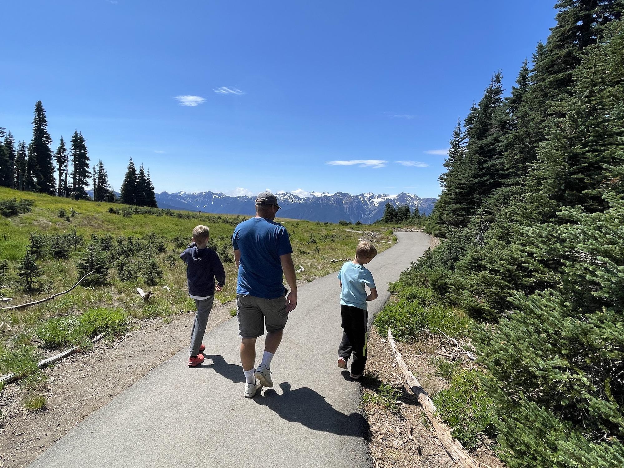 Cirque Rim Trail Olympic National Park